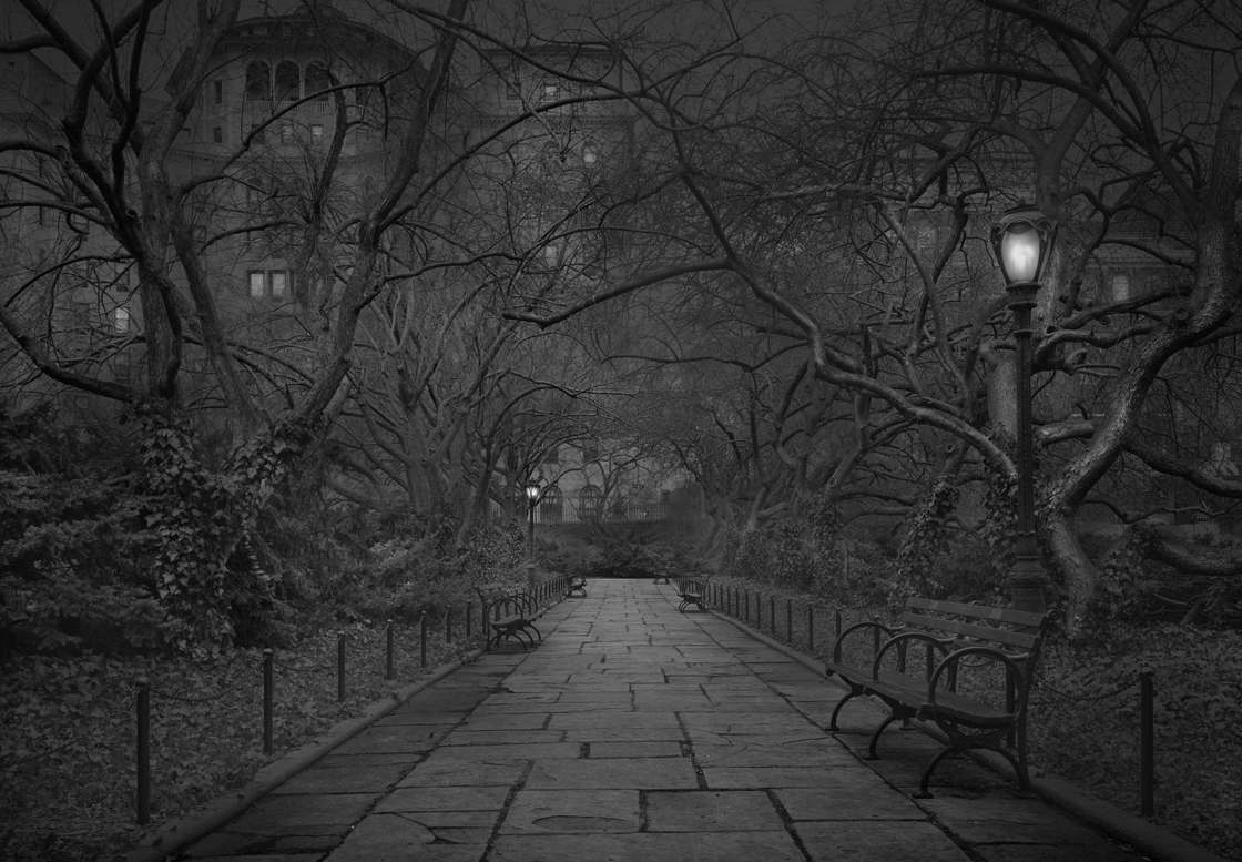Michael-Massaia-central-park-16