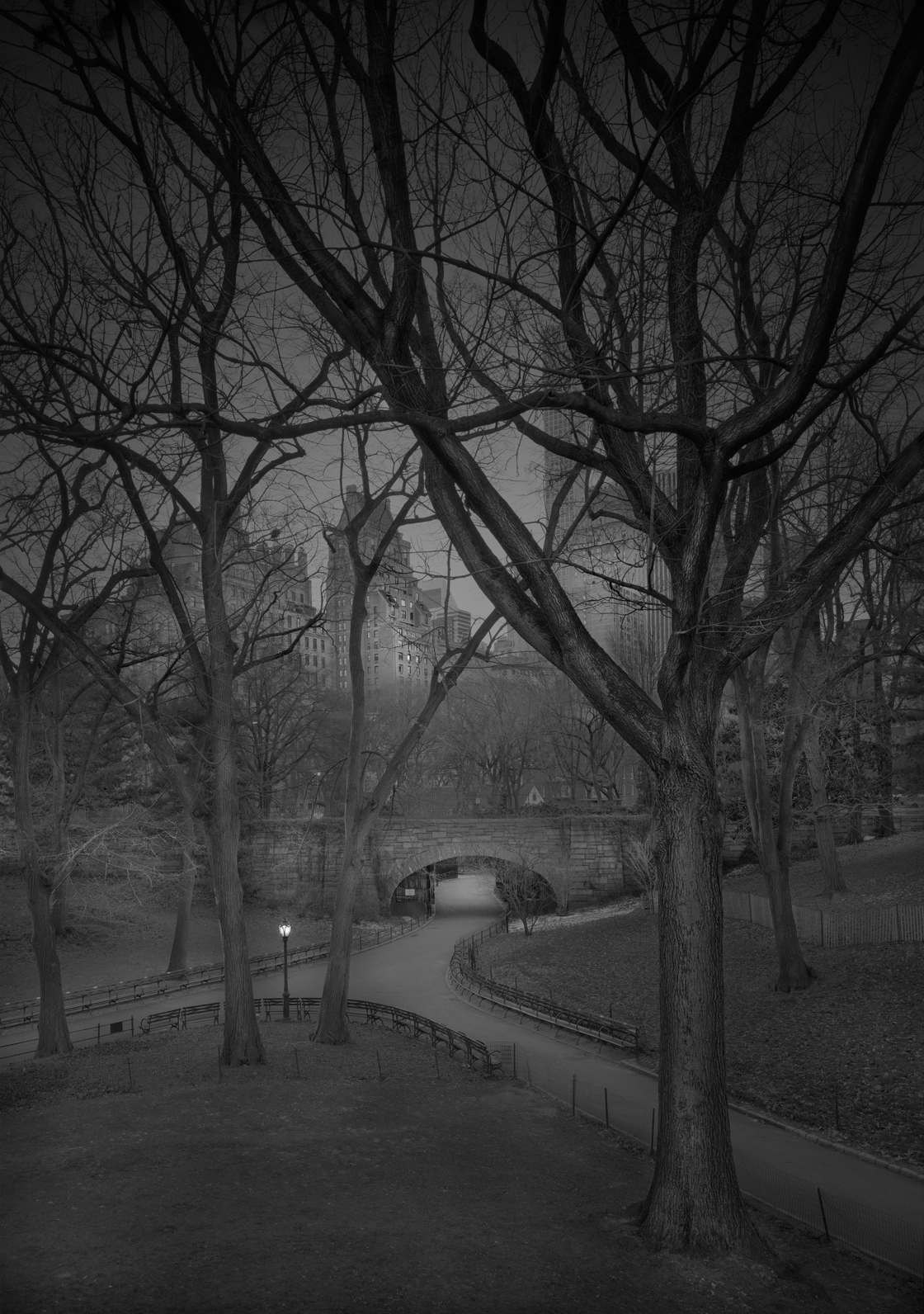 Michael-Massaia-central-park-3