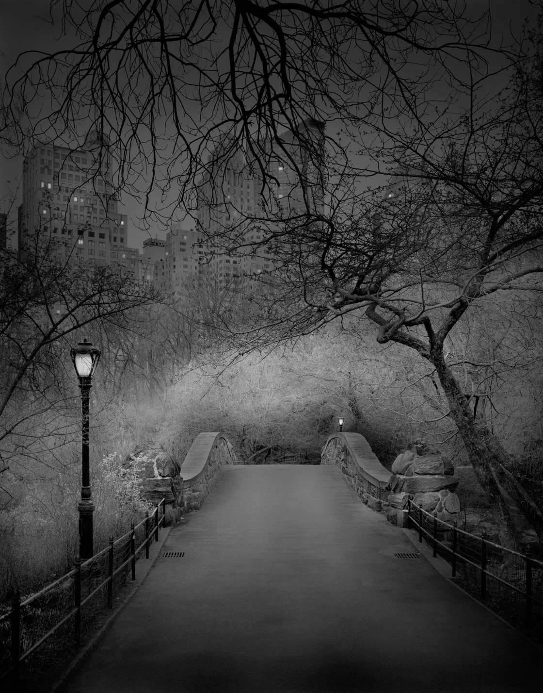 Michael-Massaia-central-park-5