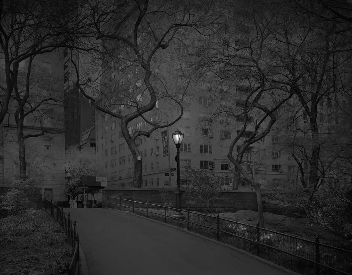 Michael-Massaia-central-park-6