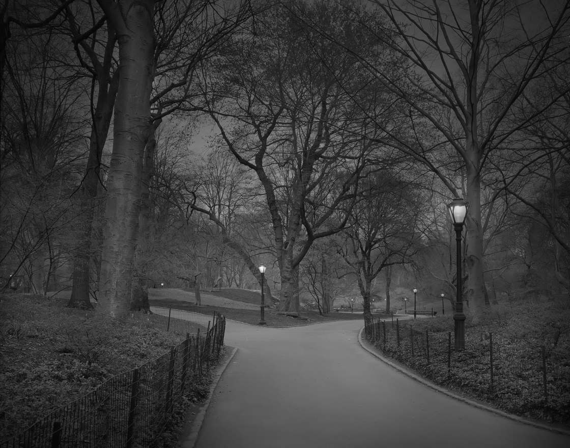 Michael-Massaia-central-park-8