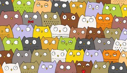 Megtalálod a négylevelű lóherét, vagy a macskát a baglyok között?