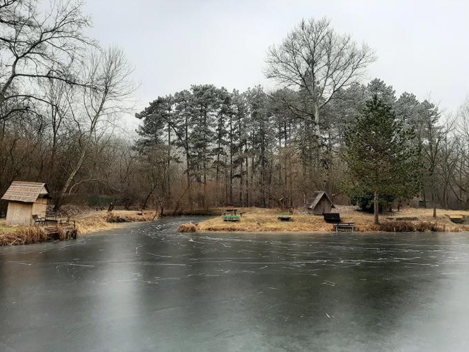 Sződligeti Horgásztó - Tél